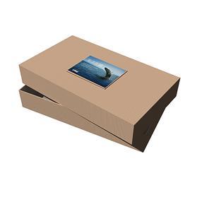 "24"" x 14"" x 4"" Kraft Pinstripe Apparel Debossed Box"