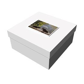 "12"" x 12"" x 6"" White Deluxe Gift Box"